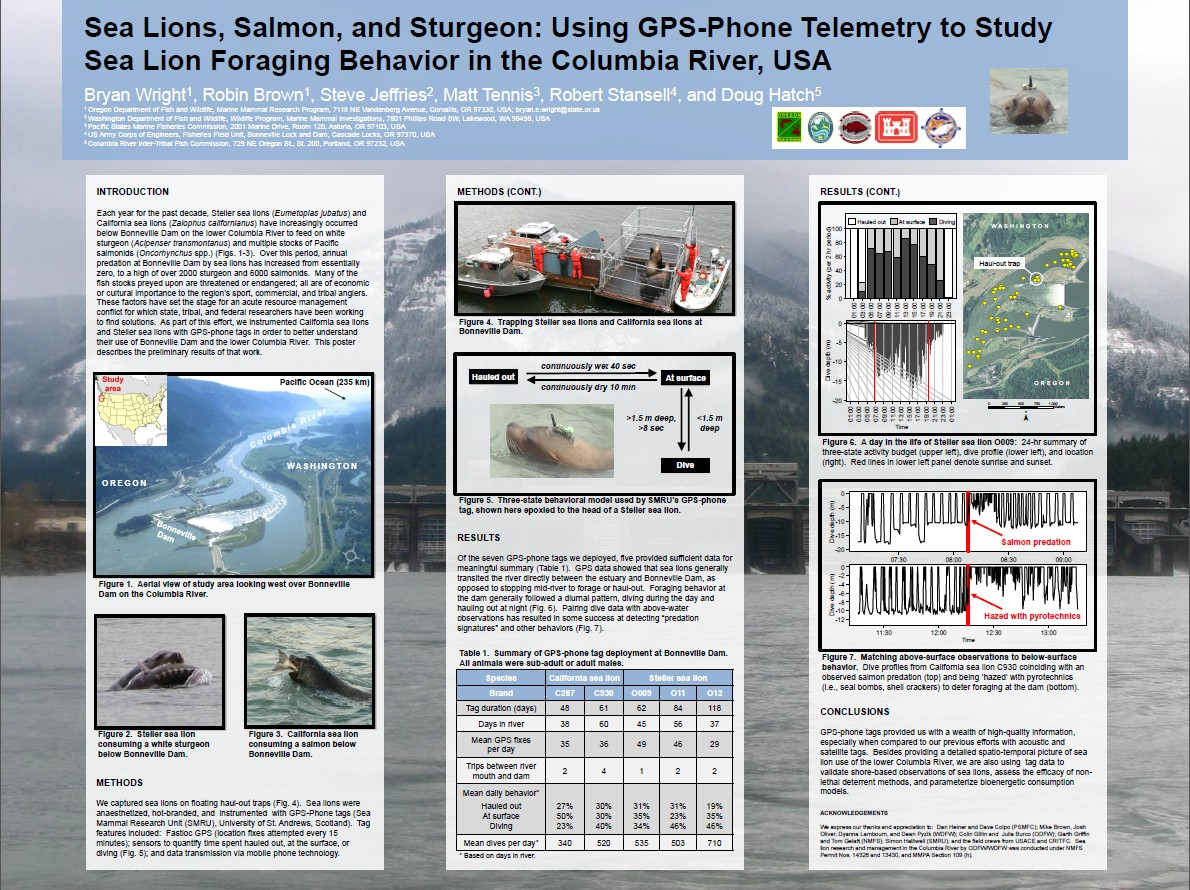 Sea Lions, Salmon, and Sturgeon: Using GPS-Phone Telemetry to Study Sea Lion Foraging Behavior in the Columbia River, USA