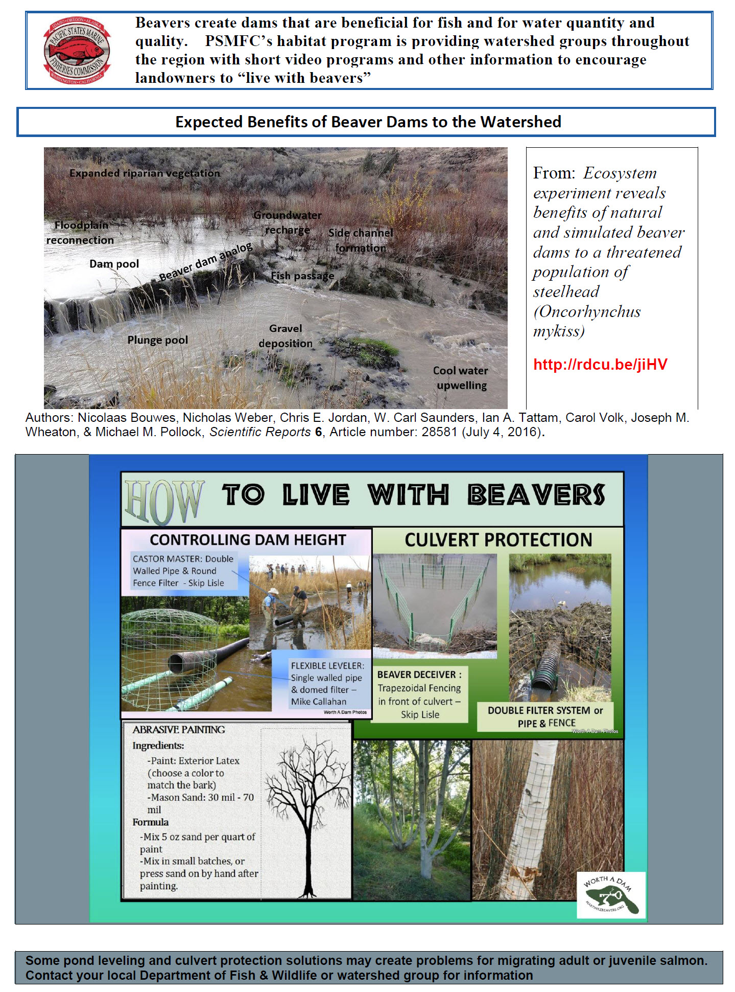 Expected Benefits of Beaver Dams to the Watershed