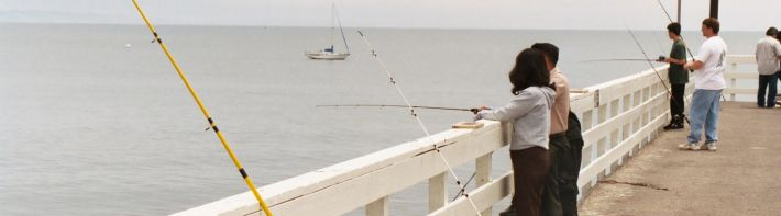 Recreational Fisheries Information Network (RecFIN)