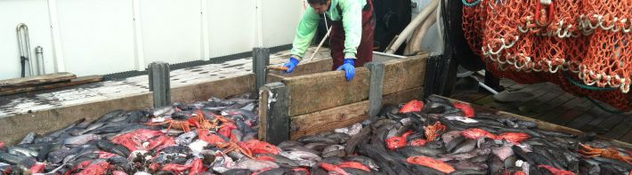 Pacific Fisheries Bycatch Program