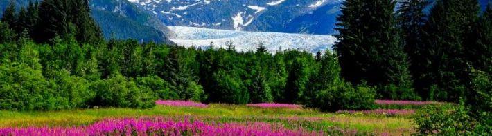 Climate Change, Arctic (2015)