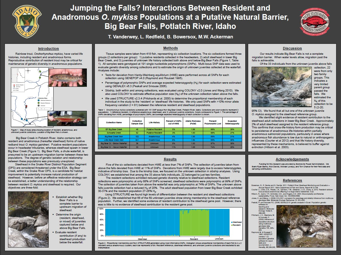 Jumping The Falls? Interactions Between Resident and Anadromous O. mykiss Populations at a Putative Natural Barrier, Big Bear Falls, Potlatch River, Idaho