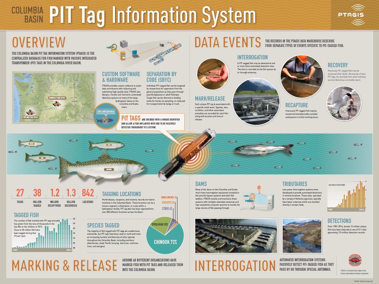 PIT Tag Information System